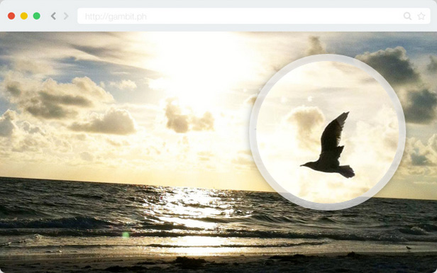 A preview of Loupe Magnifying Glass WordPress with a white border