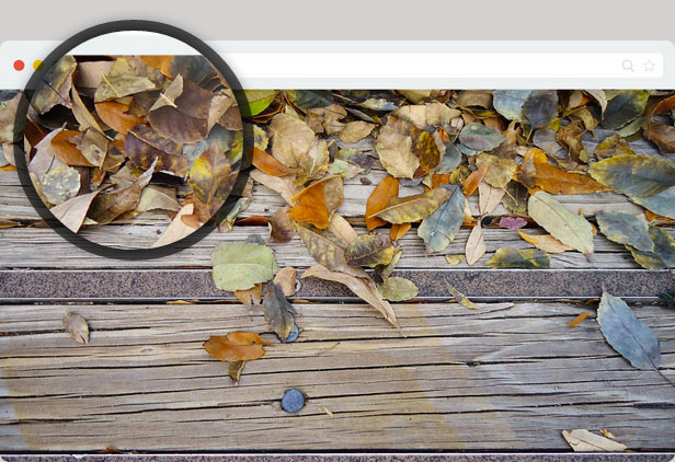A preview of Loupe Magnifying Glass WordPress with a smaller size and a black border