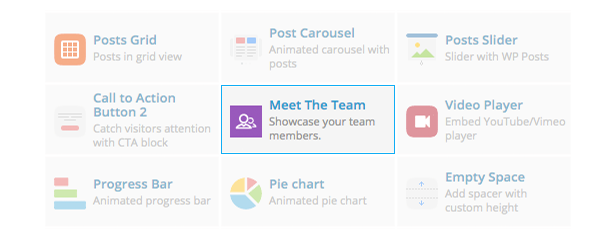 Meet the Team Shortcode for WPBakery Page Builder (formerly Visual Composer) - 3